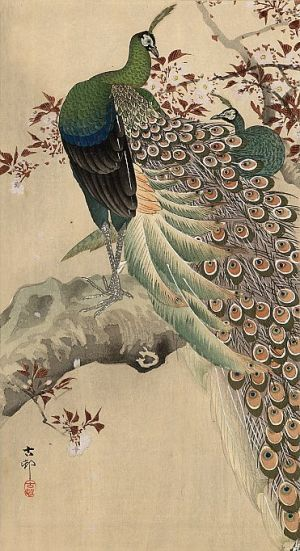 Beautiful Asia photos - japanese print woodprint4.jpg
